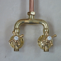 Shanks Copper and Brass Wall-Fixing Shower C.1920